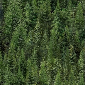 Picture of Roaming Wild Green Trees Dense Forest Evergreen Cotton Fabric