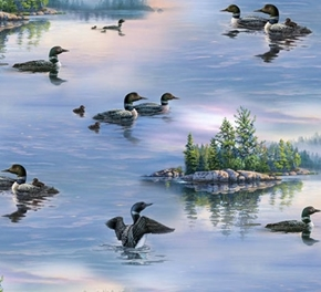 Picture of Loons Loon Aquatic Birds Divers on the Lake Cotton Fabric