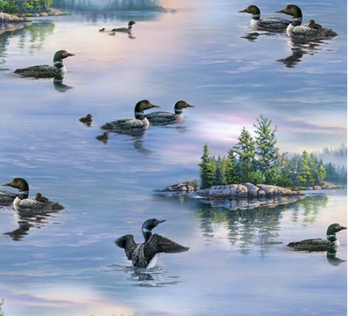 Loons Loon Aquatic Birds Divers on the Lake Cotton Fabric