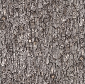 Landscape Medley Rough Wood Tree Bark Gray Cotton Fabric