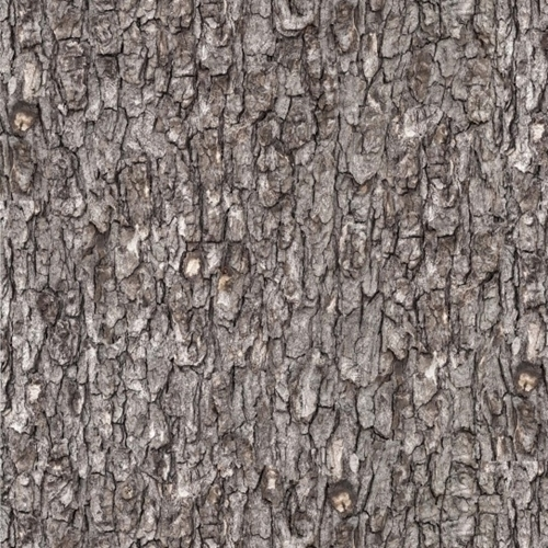 Picture of Landscape Medley Rough Wood Tree Bark Gray Cotton Fabric
