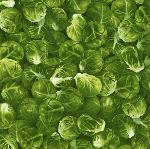 Picture of Brussel Sprouts Green Brussel Sprout Vegetable Cotton Fabric