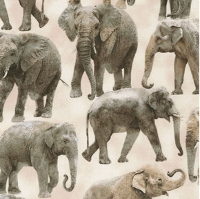 Elephants Grey African Elephant Beige Cotton Fabric