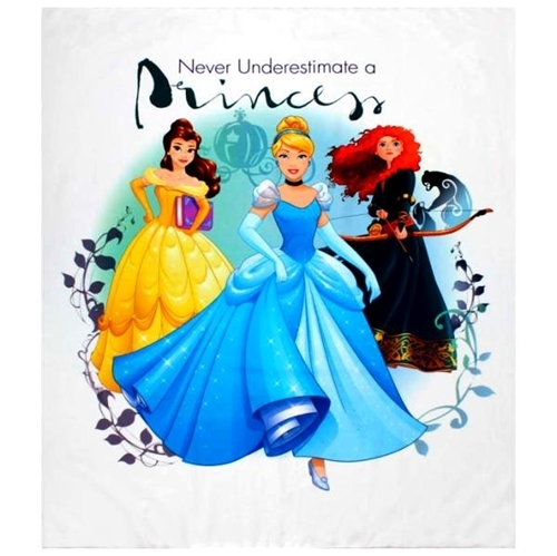 Picture of Disney Princess Heart Strong Never Underestimate A Princess Panel