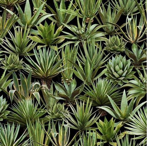 Picture of Succulents Sedum Yucca Aloe Succulent Plants Desert Trip Cotton Fabric