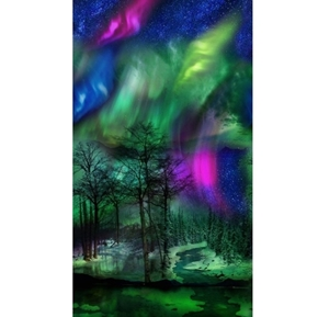 Picture of Northern Lights Aurora Borealis Trees 24x44 Cotton Fabric Panel