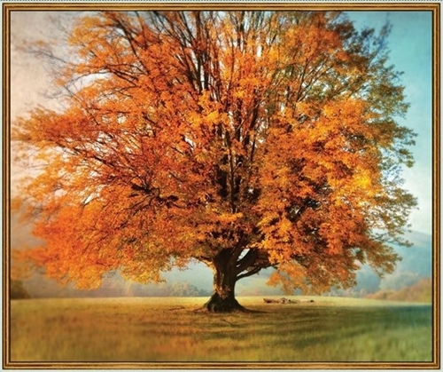 Picture of Artworks X Autumn Tree Fall Colors Cotton Fabric Panel