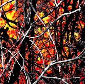 Muddy Girl Camo Wildfire Orange Camouflage Woods Sticks Cotton Fabric