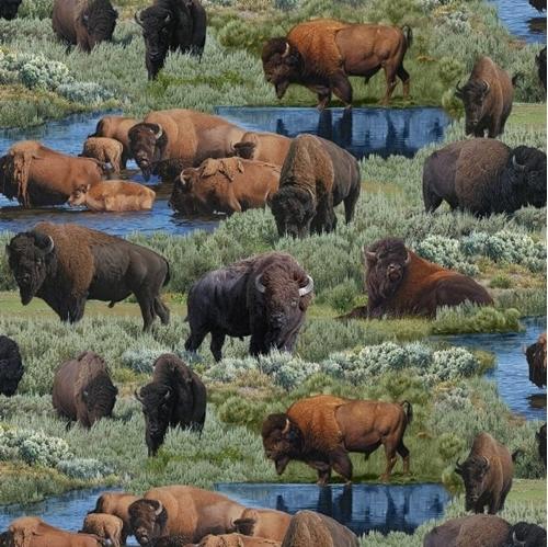 Where Buffaloes Roam Wild Buffalo Herd Grazing Cotton Fabric