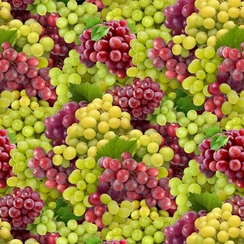 Food Festival Grapes Green and Red Grape Bunches Cotton Fabric