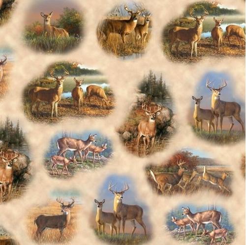 Deer Valley Scenic Deer Vignettes Hautman Brothers Cotton Fabric