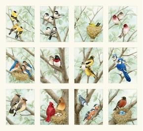 Picture of Beautiful Birds Songbird Cardinal Chickadee Block 24x22 Cotton Fabric