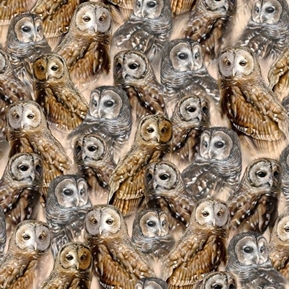 Nocturnal Wonders Packed Barred Owls Owl Collage Tan Cotton Fabric