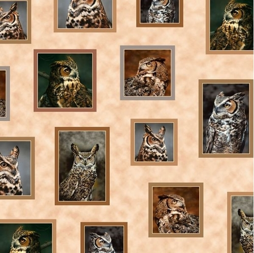 Nocturnal Wonders Great Horned Owl Small Picture Patches Cotton Fabric
