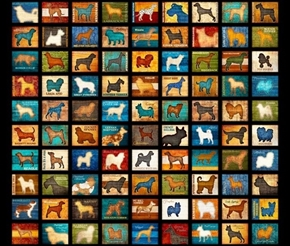 Picture of Must Love Dogs Dog Patch Dog Breed Blocks Black Cotton Fabric Panel