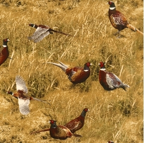 Wild Pheasant Ring-Necked Pheasants in Brown Grass Cotton Fabric