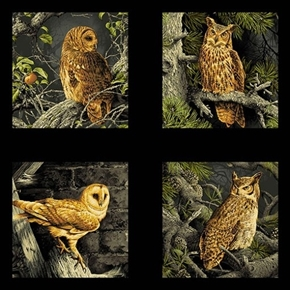 Majestic Woods Barn Owls Horned Owl Blocks 24x22 Cotton Fabric Panel