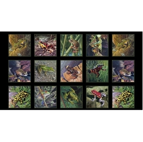 Amazing Frogs Tree Frog Amphibian Black 24x44 Cotton Fabric Panel
