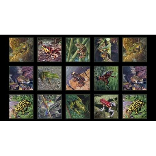 Amazing Frogs Tree Frog Amphibian Black 24x44 Cotton Fabric Panel