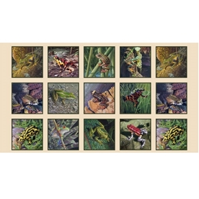 Amazing Frogs Tree Frog Amphibian Cream 24x44 Cotton Fabric Panel