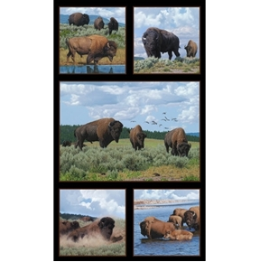 Where the Buffaloes Roam Buffalo Grazing 24x44 Cotton Fabric Panel