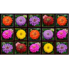 Zinnias Beautiful Zinnia Flower Blocks 24x44 Large Cotton Fabric Panel