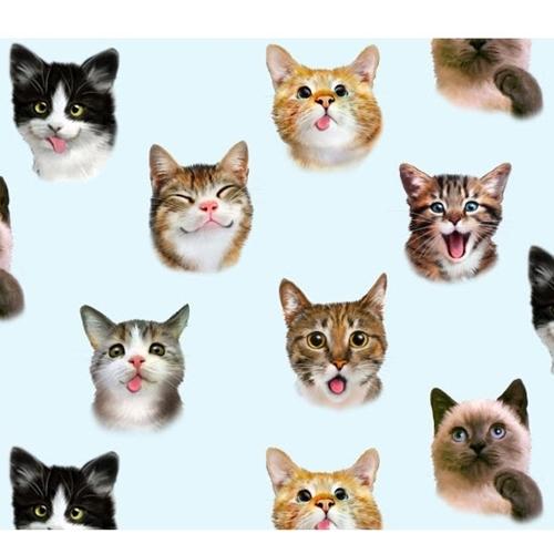 Pet Selfies Cats Silly Cat Faces Blue Kitten Selfie Cotton Fabric