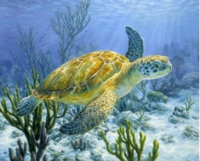 Ancient Mariner Sea Turtle Underwater Coral Large Cotton Fabric Panel