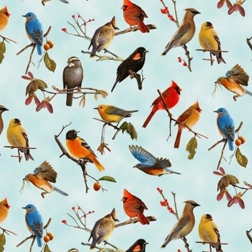 Songbirds Red-winged Blackbird Oriole Cardinal Wren Blue Cotton Fabric