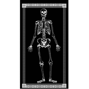 Mr Bones Glow in the Dark Skeleton Halloween 24x44 Large Fabric Panel
