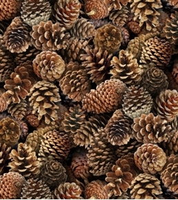 Landscape Medley Pinecones Brown Pine Cone Cotton Fabric