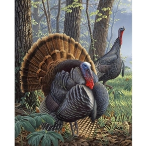 Wild Turkey Gobbler and Hen in the Woods Digital Cotton Fabric Panel