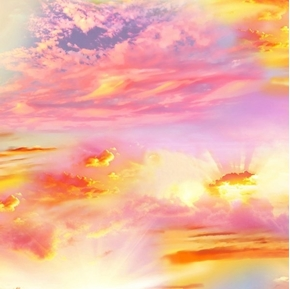 Picture of Sunset Sky Scenic Desert Trip Setting Sun Cotton Fabric