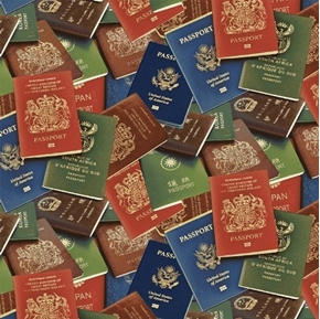 Picture of Passport Books International Travel Passports Cotton Fabric