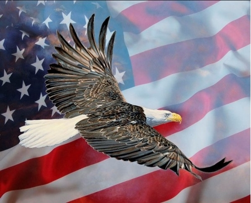 Eagle and the Flag Patriotic Digital Large Cotton Fabric Panel