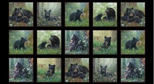 Tender Moments Black Bears Bear Family Block 24x44 Cotton Fabric Panel