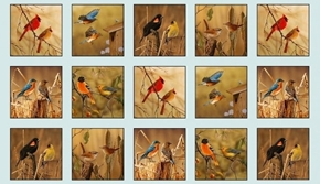 Picture of Songbirds Cardinal Bluebird Wren Bird Block 24x44 Cotton Fabric Panel