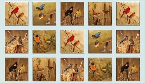 Songbirds Cardinal Bluebird Wren Bird Block 24x44 Cotton Fabric Panel