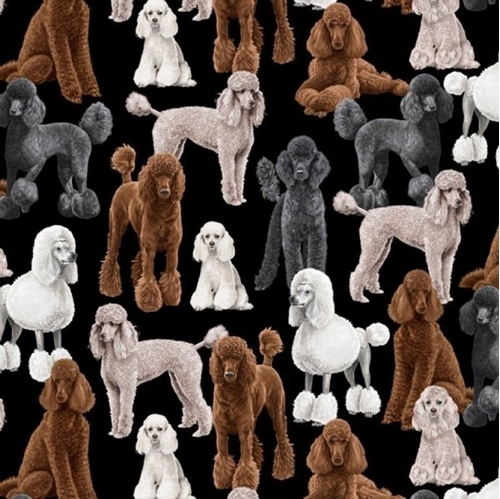 Picture of Standard Poodle Dog Poodles Dogs on Black Cotton Fabric