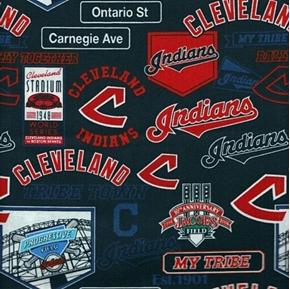MLB Baseball Cleveland Indians Stadium History Cotton Fabric