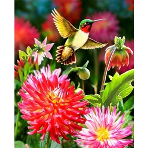 Dahlias and Hummingbird Hummingbirds Flowers Large Cotton Fabric Panel