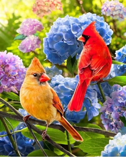 Picture of Cardinals and Hydrangea Songbird Flower Large Cotton Fabric Panel