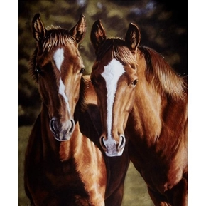 Horsin Around Tango 2 Horses Equestrian Horse Cotton Fabric Panel