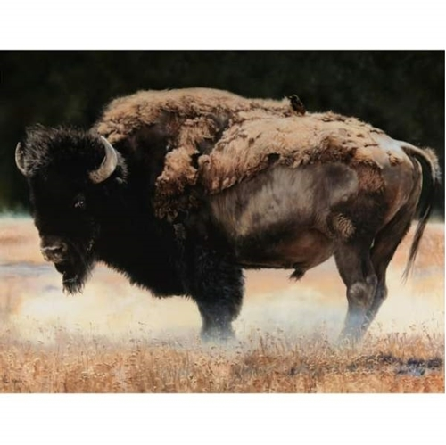 Picture of Wild and Playful Buffalo Grazing Digital Animal Cotton Fabric Panel