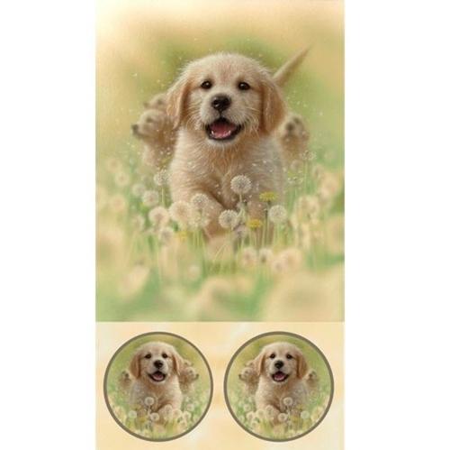 Artworks XV Yellow Labrador Puppy Dog 24x44 Cotton Fabric Panel