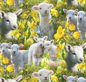 Easter Lambs Baby Sheep in the Daffodils