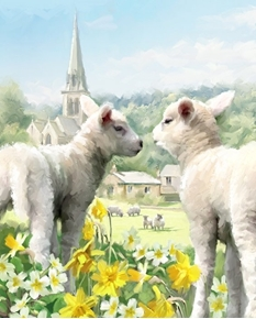 Easter Lambs Baby Sheep in the Church Yard