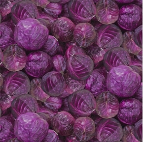A La Carte Purple Cabbage Red Cabbage Heads Cotton Fabric