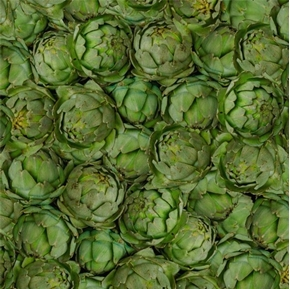 A La Carte Artichokes Packed Green Artichoke Cotton Fabric