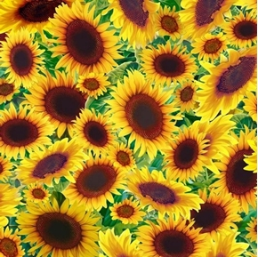 Picture of Songbirds Sunflowers Bright Yellow Flower Cotton Fabric